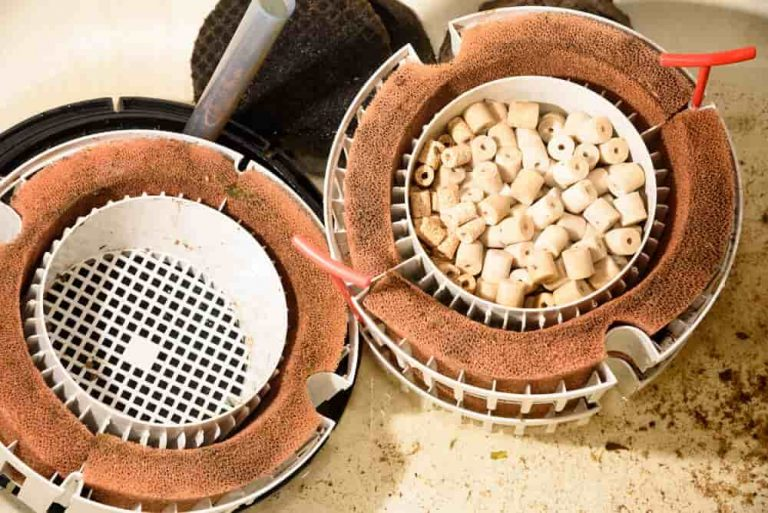 change-your-filter-without-loosing-bacteria