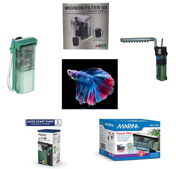 best-filters-for-betta-tank